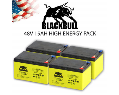 "Akku / Batterie - 48V 15AH ""Performance"", AGM Blei, Revoluzzer & Revoluzzi 2.0"