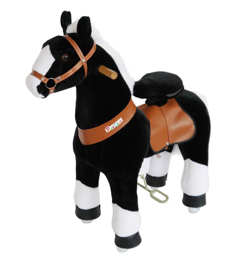 """Pony """"Charly""""-3-5 years"""