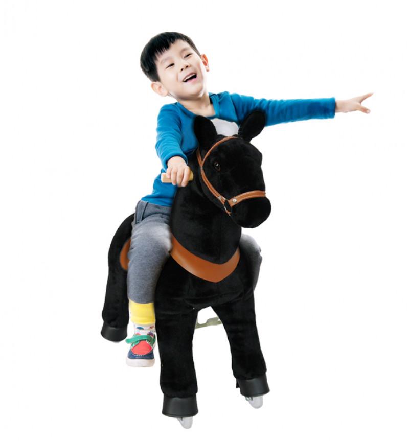 """Pony """"Zorro"""" - 4-9 Jahre"""